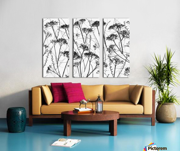 Silhouette of dried plants Split Canvas print