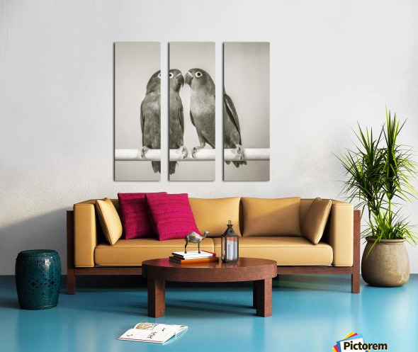 Two love birds kissing Split Canvas print