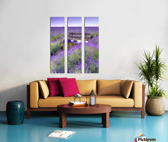 Bench in Lavender field Split Canvas print