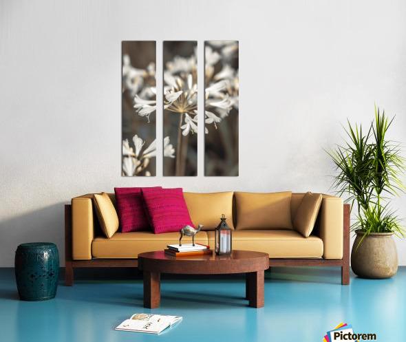 African Lilies Split Canvas print
