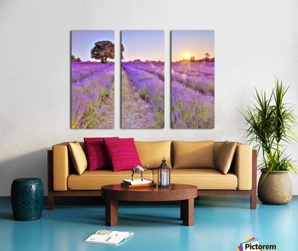Lavender field at sunset Split Canvas print