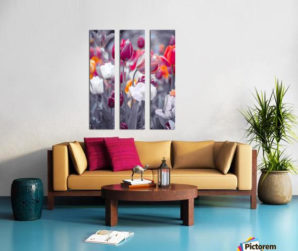 Colorful Tulip flowers Split Canvas print