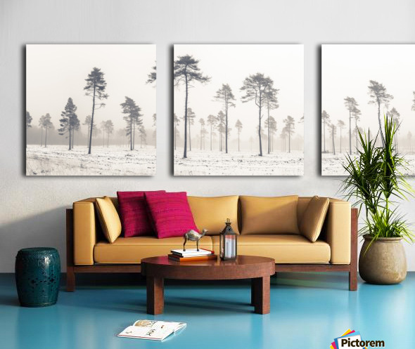 Snowy forest in winter Split Canvas print
