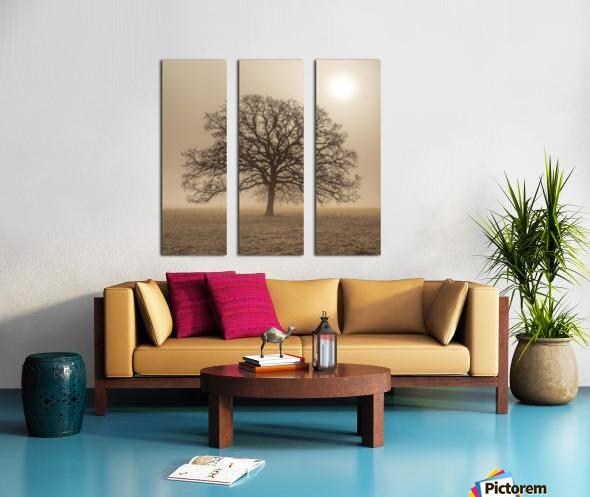 Trees in grass fields Split Canvas print