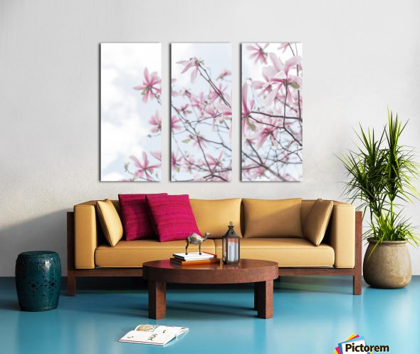 Magnolias against sky Split Canvas print