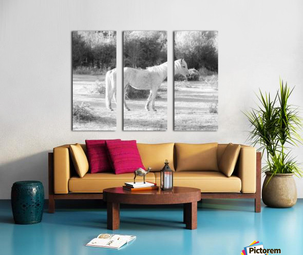 Horses at the New Forest, UK Split Canvas print