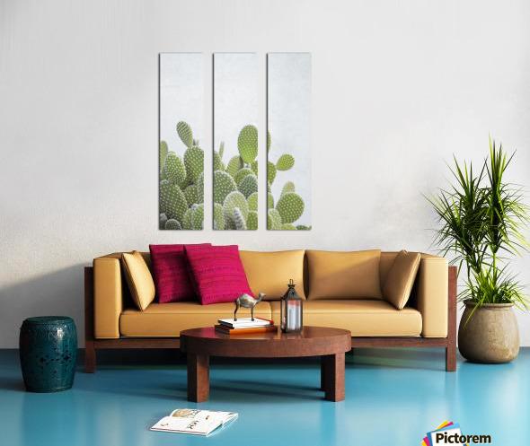Cactus plant Split Canvas print