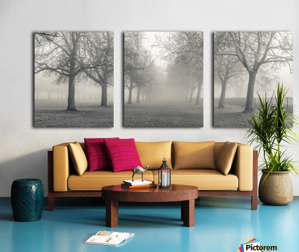 Pathway through trees Split Canvas print