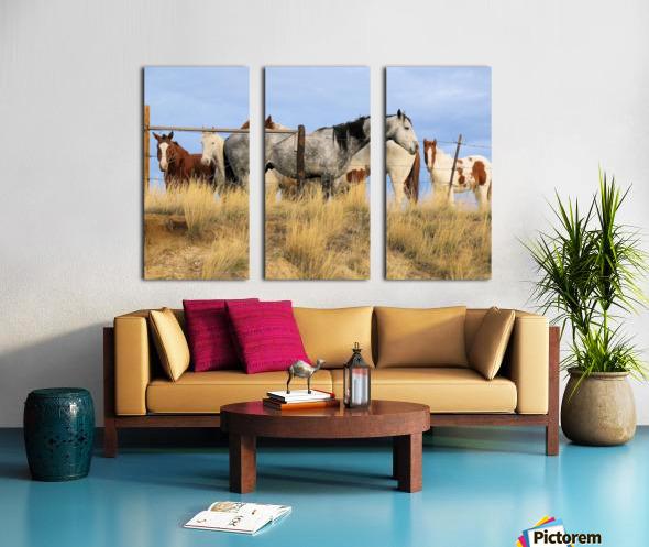 Little Bighorn Ponies Split Canvas print