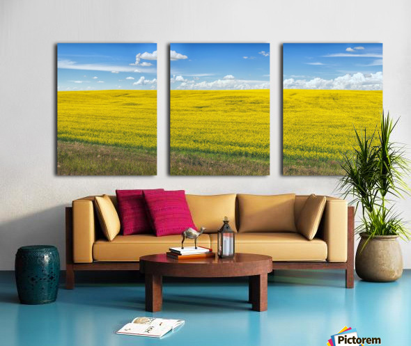 Blue Sky Split Canvas print