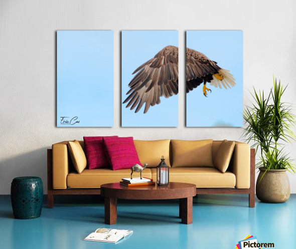 _CAS4850 2 Split Canvas print