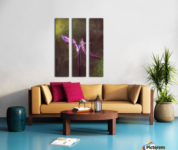 12494253_10153497339628558_1614706987_o Split Canvas print
