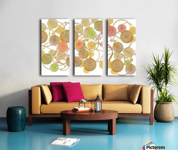 Lace Split Canvas print
