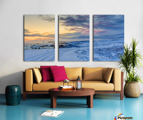 The Colour of Winter Split Canvas print