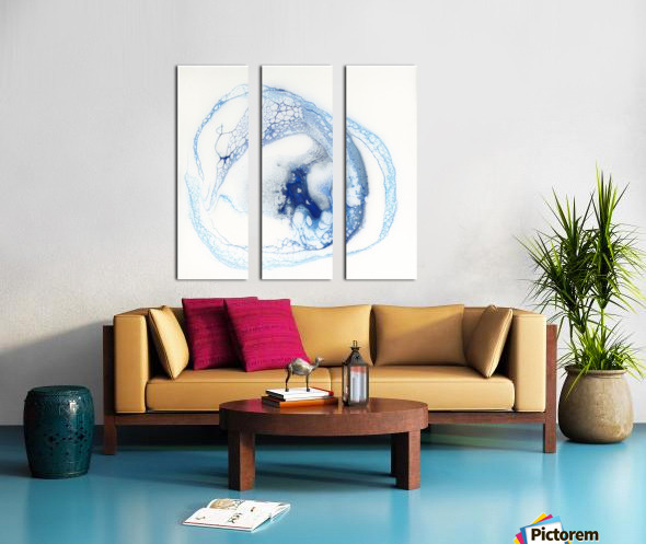 Pelagic Split Canvas print