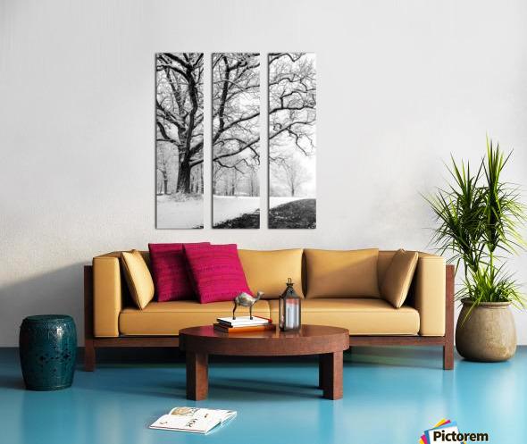 First Snowfall Split Canvas print