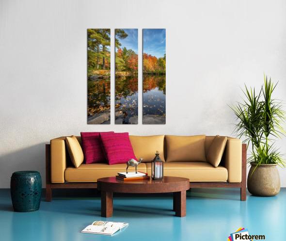 Skootamatta Split Canvas print