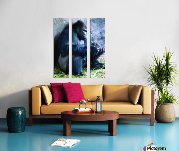 Alone Mountain Gorilla Africa Split Canvas print