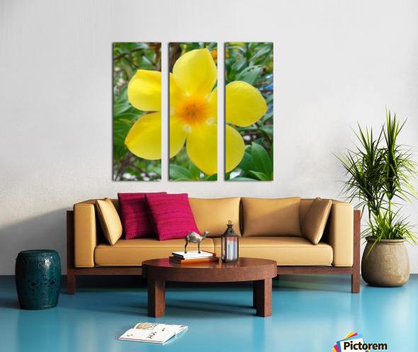 Perfect Split Canvas print