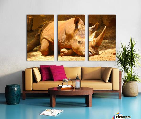 Rhino - Natural World Kids Gallery Split Canvas print