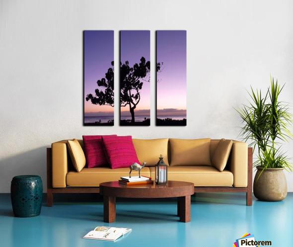 Silhouette Split Canvas print