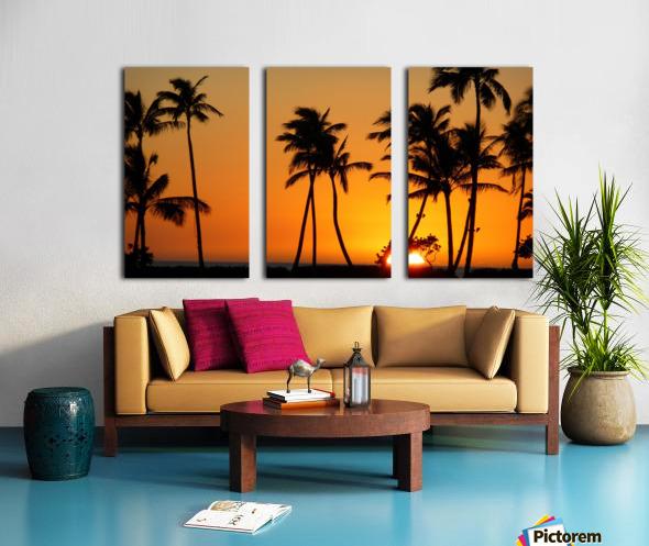 Golden Split Canvas print