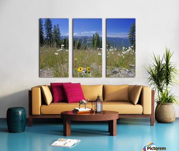 Sierra Nevada in Spring 5 of 8 Split Canvas print