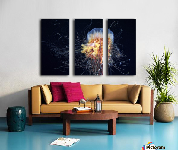 Giant Lion's Mane Split Canvas print
