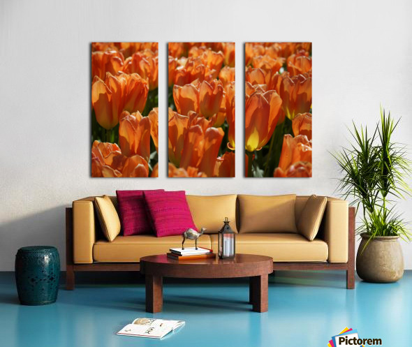 Spring Blooms of Holland 4 of 8 Split Canvas print