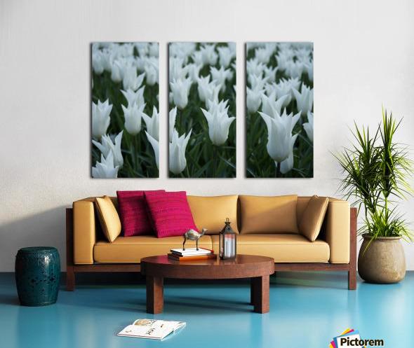White Split Canvas print