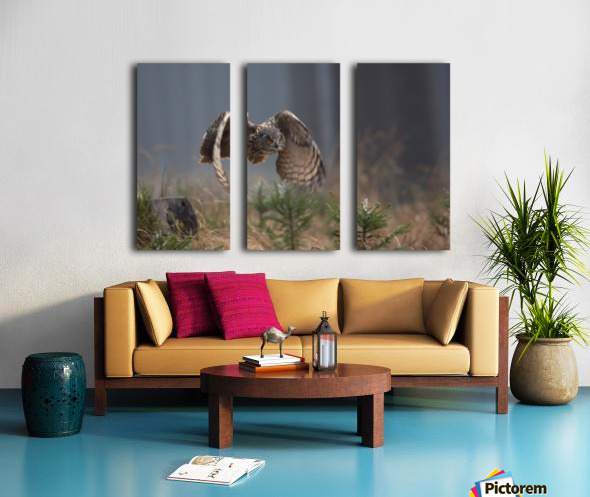Eurasian Eagle-Owl by Milan Zygmunt  Split Canvas print