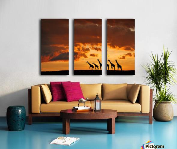 Five Giraffes Split Canvas print