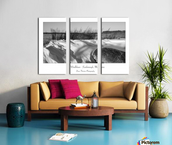 Windblown Split Canvas print