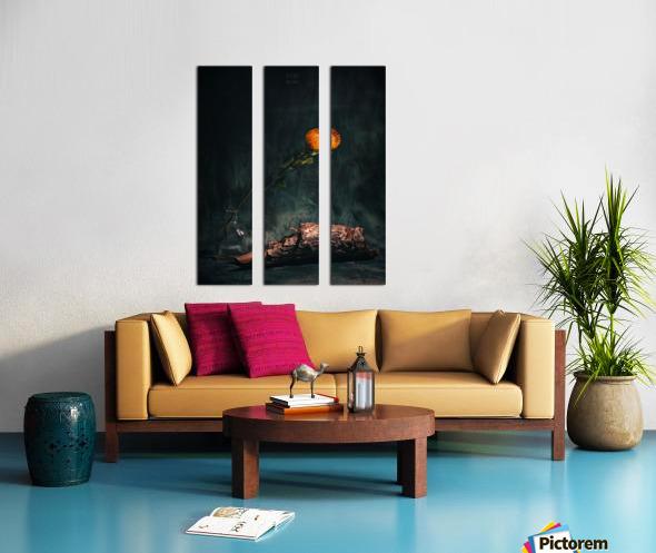 Zen 3b Split Canvas print
