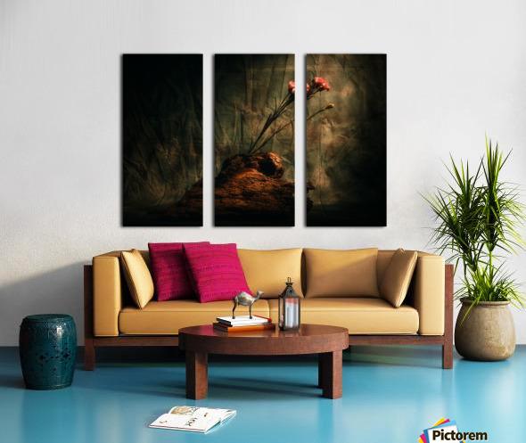 Montagne et Zen Split Canvas print