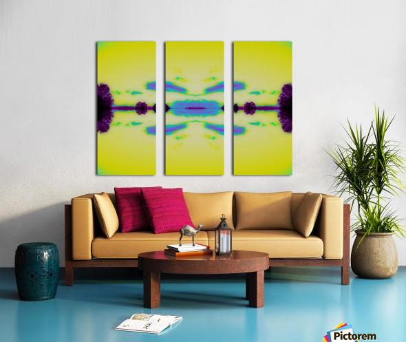 Portal  29  Split Canvas print