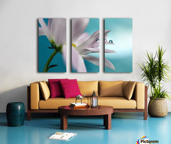 In turquoise Company Split Canvas print