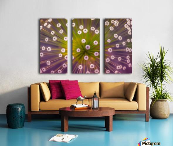 Colours Split Canvas print