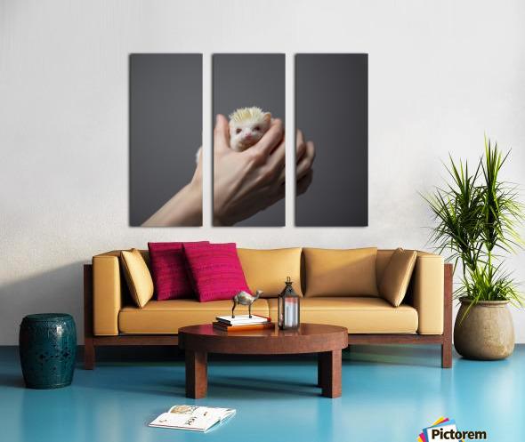 Picky Pickle I Split Canvas print