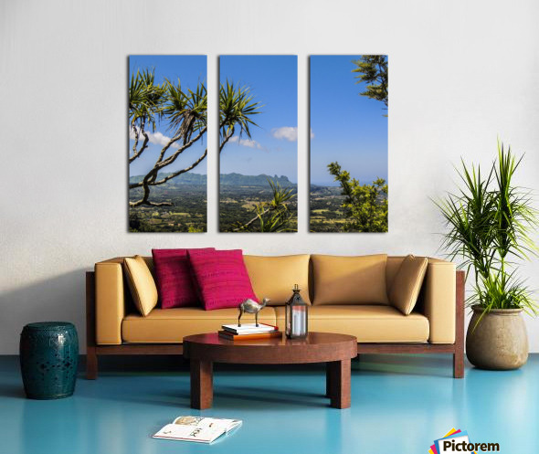 View to Forever Split Canvas print
