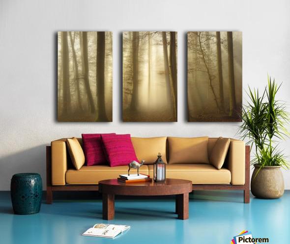 Into the Trees Split Canvas print
