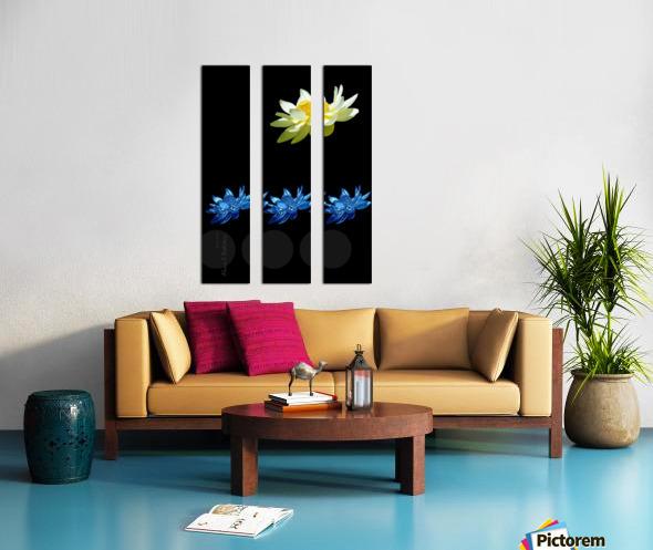 Lotus 1 Split Canvas print