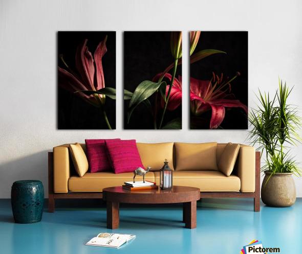 Floraison 2 Split Canvas print
