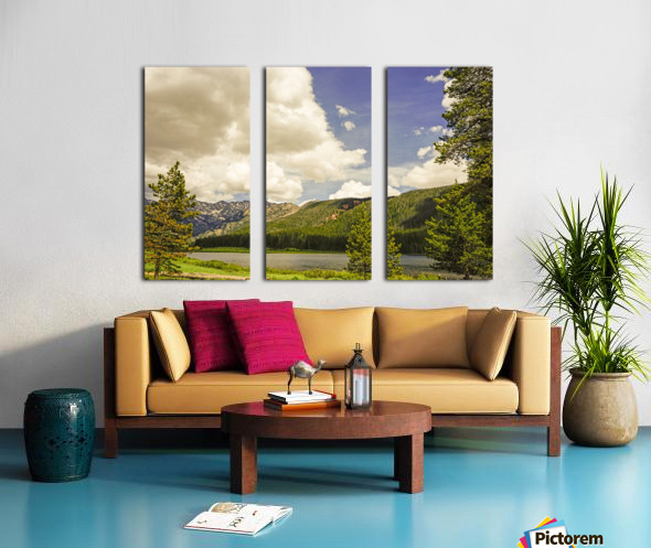 Back Country Colorado 6 of 8 Split Canvas print