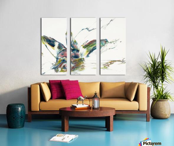 Chameleon Split Canvas print
