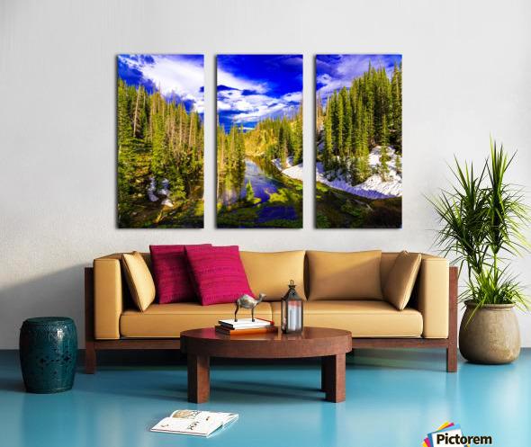 DSC00906 Split Canvas print