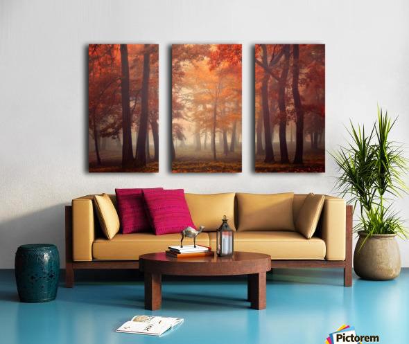Feel Split Canvas print