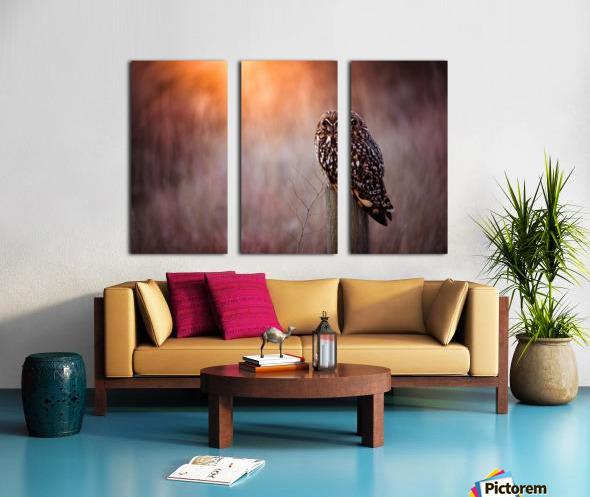 OWL Split Canvas print