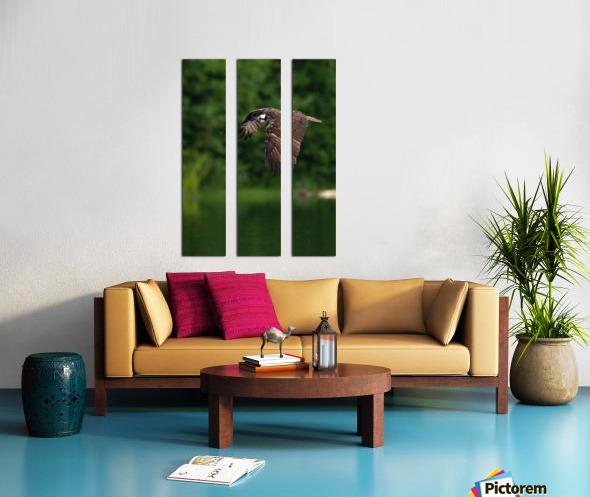 Wesley Allen Shaw 00460 Split Canvas print