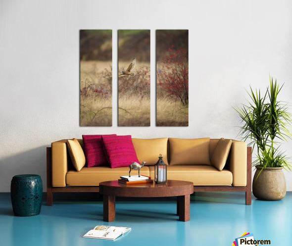 Wesley Allen Shaw 02085 Split Canvas print